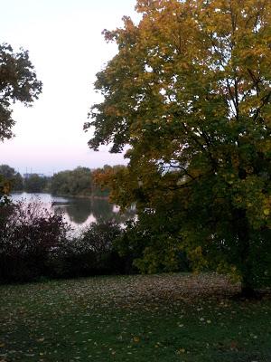 Veronika der Herbst ist da ;)