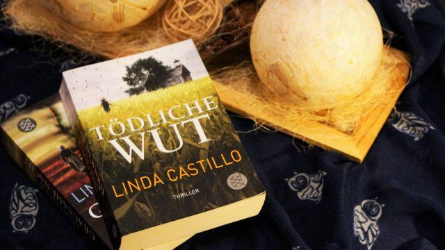 Neuzugänge Linda Castllo Tödliche wut Grausame Nacht